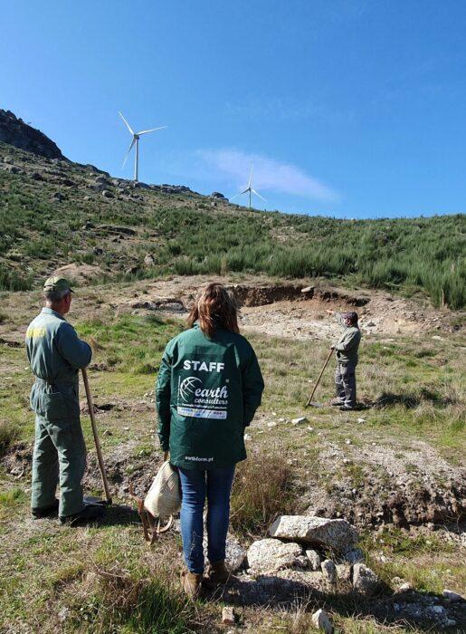 Projeto Bosque Softinsa